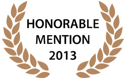 2013 Sustainable Technologies